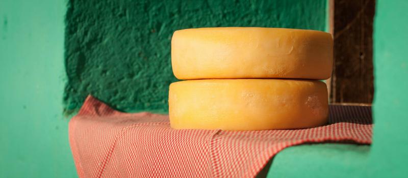 queijo da serra da canastra